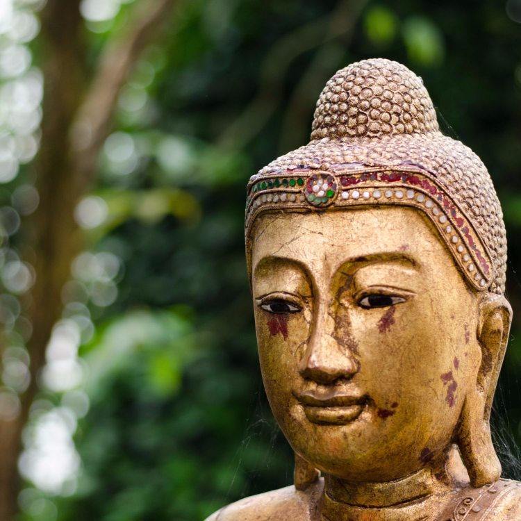 The 5 Common Causes of Mental Suffering According to Buddhism (and How You Can Overcome Them)