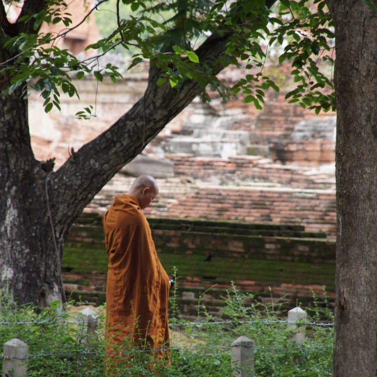 15 Quotes From a Buddhist Master That Will Remind You to Believe in Yourself