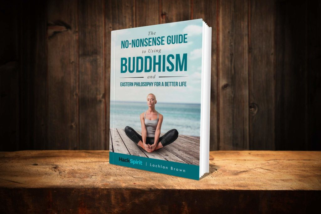 Buddhism Without Beliefs Ebook